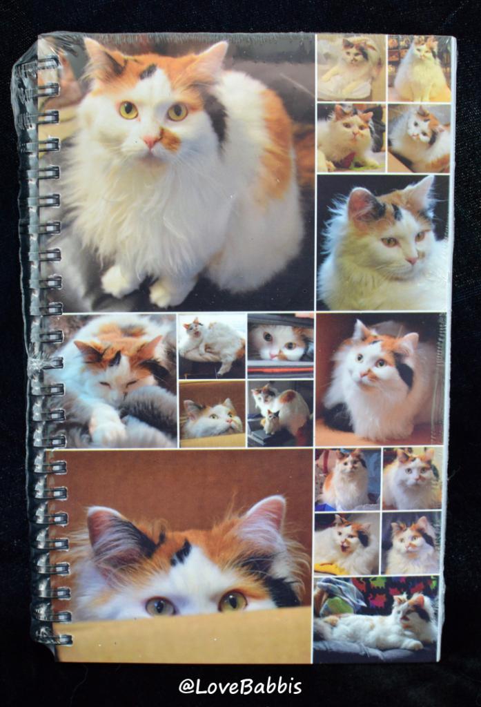 LoveBabbis Spiral Bound Notebook