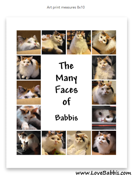Many Babbis Faces Collage